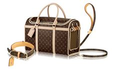 Louis Vuitton shopping accessoires pour chiens