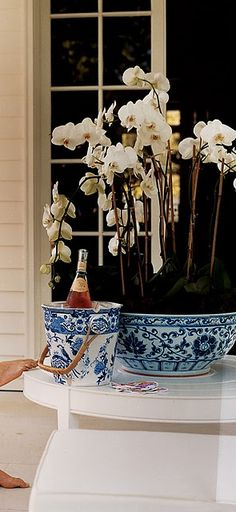 Orchids in a blue & white pot & wine chilling? How thoughtful of you! Would you like to share a glass? Blue And White China, Blue China, Love Blue, Champagne Buckets, Pink Champagne, Enchanted Home, White Orchids, White Decor, White Porcelain