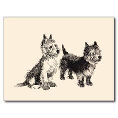 Cairn Terriers Vintage Pen & Ink Post Cards