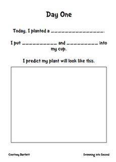 Plant observation book pages