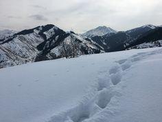 Around Almaty Kazakhstan, Snow, Outdoor, Outdoors, Outdoor Living, Garden, Eyes
