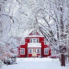 Sweden ⛄ Photo by @danijelivic