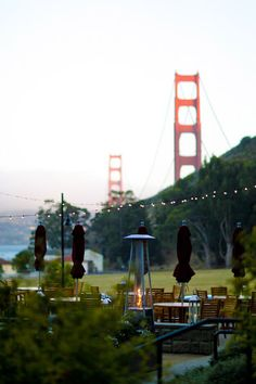 Just visited Cavallo Point as a possible wedding venue and this was really the view - the fiancé did good!