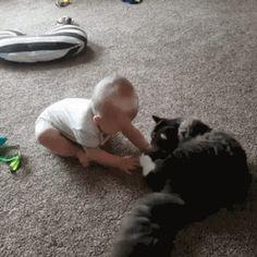 Cats teaching kids the correct way to bathe, lol