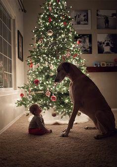 大きな犬と小さな子供のラヴィング・ユー : カラパイア
