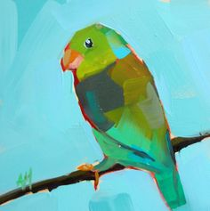 Green Parrotlet original