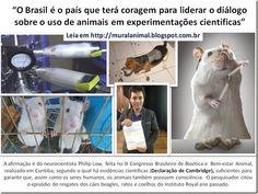 Mural Animal: Brasil e o Uso de Animais em Experimentações Cient...