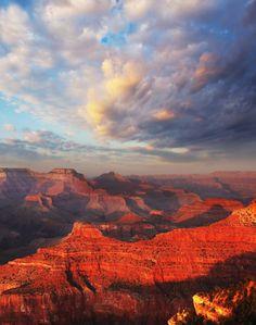 Grand Canyon Map, Grand Canyon Camping, Grand Canyon South Rim, National Park Lodges, Grand Canyon National Park, National Parks, Whitewater Rafting, Park Service, Stargazing