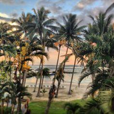 View of Sinalei's beautiful beach & sunset! #sinaleireefresort&spa #samoa #beach