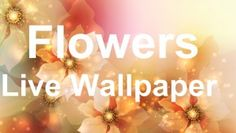 """Enjoy the marvelous sight of the colorful flowers scattered across sunny fields & valleys with amazing new Flowers Live Wallpaper! Daisies, lilies, sunflowers, tulips, roses, lavender, & many more kinds of flowers can now decorate the mobile phone screen. Watch the beautiful sparkly flower petals of vivid colors floating across smartphone. Check out this wonderful new """"Flower Live Wallpaper"""" & enjoy mesmerizing images of lovely springtime flowers."""
