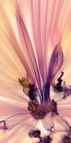 JR Schimdt - Computer generated art / #art #graphic #illustration