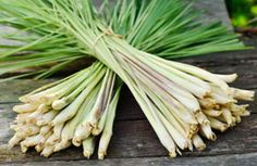 cooking with spices lemongrass