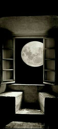 When the moon is just outside your window, expect a different sort of light. Do not hide in the shadows, what lurks there avoids all light.