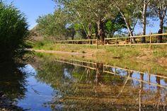 Área recreativa del río Sosa. San Esteban de Litera (Huesca), La Litera, Aragón, Spain.