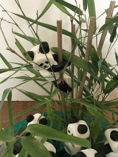 Traktatie #panda #bos
