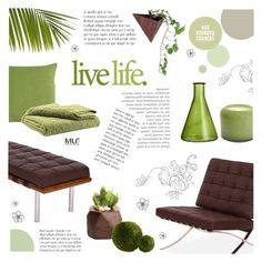"""Live Life"" by c-silla ❤ liked on Polyvore featuring interior, interiors, interior design, home, home decor, interior decorating, Alassis and Dot & Bo"