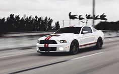 Shelby Mustang Shelby GT500