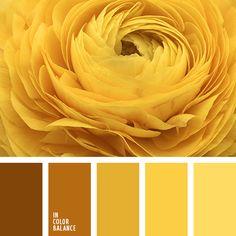 бежевый, кукурузный, монохромная желтая цветовая палитра, монохромная цветовая палитра, оттенки желтого, оттенки коричневого, палевый, цвет яичного желтка, цветовое решение, цветовые сочетания, шоколадный, янтарный.