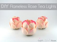 DIY Project: Flameless Rose Tea Lights. http://www.smartschoolhouse.com/crafts-and-diy/diy-flameless-rose-tea-lights/2