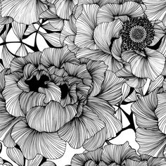 The 28 best floral print black white images on pinterest 006 floral print black white doodle patterns zentangle patterns floral patterns mightylinksfo