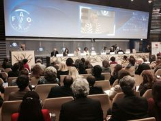 Emma Bonino ministro degli Esteri italiano mentre parla durante il convegno per la firma dell'accordo tra #expo2015 e la #Fao