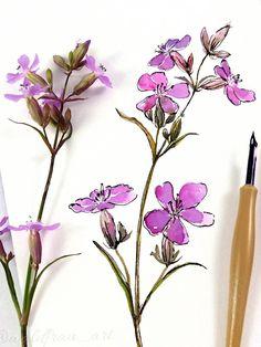 Watercolor& ink sketchbook illustration Nature Illustrations, Watercolor And Ink, Wild Flowers, Glass Vase, Purple, Plants, Decor, Decoration, Wildflowers