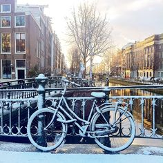 Fresh snowfall in Amsterdam. Photo courtesy of nowwhatstheplan on Instagram.
