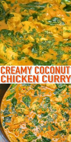 This Thai chicken coconut curry recipe is a richly seasoned creamy sauce paired with tender chunks of chicken and spinach that makes a great meal! Printable recipe and nutrition info on scra Healthy Chicken Recipes, Vegan Recipes Easy, Indian Food Recipes, Vegetarian Recipes, Cooking Recipes, Chicken Curry Recipes, Crock Pot Thai Chicken Curry, Chicken Vegetable Curry, Thai Curry Recipes