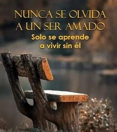 👉 Recomiendo a Stress And Depression, Stress And Anxiety, Life Goes On, Life Is Good, Missing You Quotes For Him, Miss My Dad, Christian Wallpaper, Love Phrases, Love Dating
