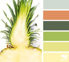 Color Slice via @designseeds