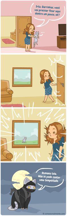 O que realmente acontece quando tento prender minha gata dentro de algum lugar. Ela não pode ser contida.