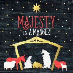 Majesty in a Manger  Various Artists CD from Christianbooks-Christianmusic.co.uk