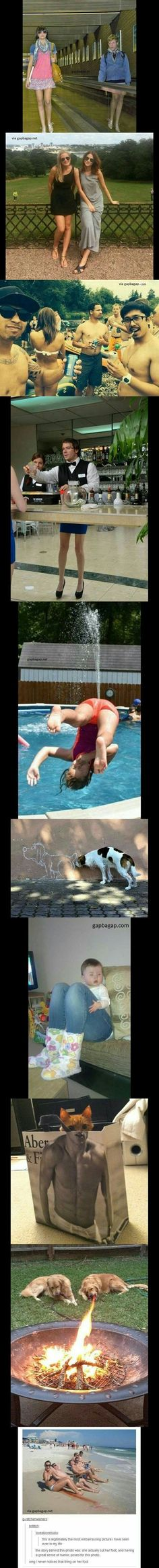 Top 10 Funny Perfectly Timed Photos