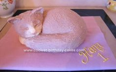 Homemade Cat Birthday Cake: Our little 1 year old daughter is IN LOVE with cats, so it was an obvious choice for her first cake to make her a cat birthday cake.  My first step was