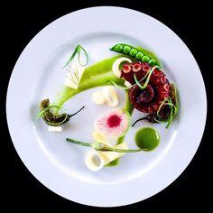 Gourmet                                                                                                                                                                                 More
