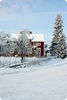 the little red house under the snow