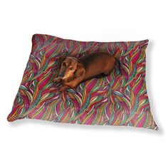 Uneekee Deep Down In The Colorful Land Of Hundertwasser Dog Pillow Luxury Dog / Cat Pet Bed