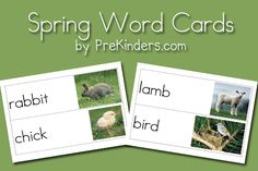 Spring Picture Word Cards. The site contains many more words cards for different themes.