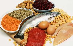 Protein is the main staple of Atkins diet food list