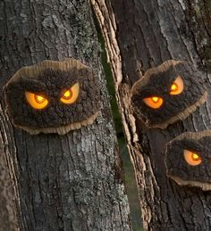 Give trick-or-treaters a fright with our LED glowing tree eyes. Simply place nail/screw in the tree to hang. Made of weather-resistant resin. Holidays Halloween, Halloween Crafts, Halloween Decorations, Halloween Stuff, Spooky Halloween, Light Up Tree, Graffiti, Tree Faces, Art Supply Stores