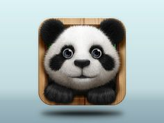 Hey, Panda! by Shakuro #icon #design