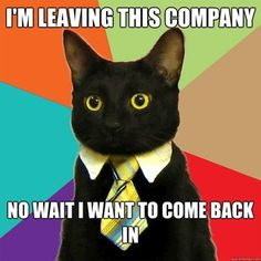 "(More business cat memes) ""I'm leaving this company. No, wait--I want to come back in."""
