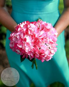 Pink Hydrangea Bouquet - bridesmaids? And this turquoise exactly