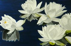 Midnight Stars Online Gallery, Stars, Plants, Painting, Paintings, Plant, Draw, Star, Drawings