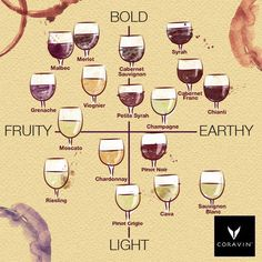 Do you prefer light or bold wines? Do you tend to enjoy wines that are more fruity or earthy? Get Wine. Premium Wines delivered to your door. Get my FREE Mini Course on pairing wine and food. Guide Vin, Wine Guide, Wine Drinks, Cocktail Drinks, Alcoholic Drinks, Beverages, Wine Tasting Party, Wine Parties, Wine Tasting Outfit