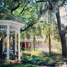 Whitefield Square is a popular place for weddings and for couples getting engaged! • Visit Savannah