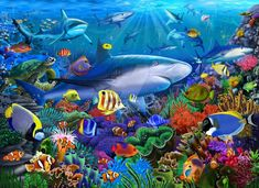 Fine Art Prints, Framed Prints, Poster Prints, Canvas Prints, Posters, Aquarium Backgrounds, Freelance Illustrator, Print Artist, Adult Coloring Pages