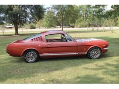 listing 1966 Ford Mustang is published on Free Classifieds USA online Ads - http://free-classifieds-usa.com/vehicles/cars/1966-ford-mustang_i32736