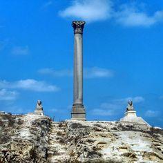 Pompeii column Alexandria Egypt #alexandria #egypt #column #archaeology #history #like4like #likeforlike #follow #followme #follow4follow #followforfollow #instagram #instagood #instagoodness #instacool #instalike #instatravel #instamood by flavio.messina