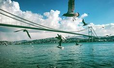 On the first day of 2016, Istanbul is a mix of snow and sun. The city where continents, cultures, and climates meet.   Photo by @semopal #Istanbul #Ortakoy #Bosphorus #2016 #Turkey#Travel #Winter #Bridge #Seagull #Sea